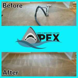 Apex Carpet and Upholstery Cleaning Kawartha Lakes Peterborough Area image 3