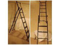 Extension Ladder/ Step Ladders