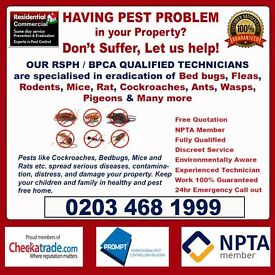 Pest Control Services (Mice Fleas Cockroaches Bed bugs) London, Camden, Fulham, Hammersmith, Lambeth