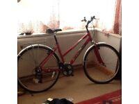Woman's hybrid barracuda bicycle hardly used