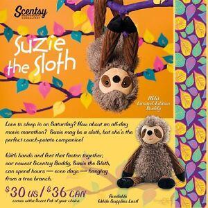 Meet SUZIE THE SLOTH!