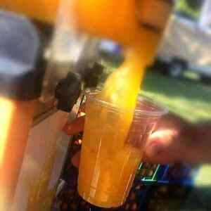 Fresh orange juice business Cooroy Noosa Area Preview