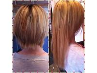 Micro Ring Hair Extensions (Mobile Extensionist)