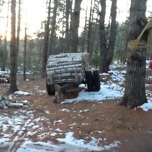 Cheapest firewood around