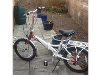 Aluminium folding push bike