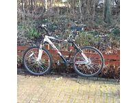 Dawes men's mountain bike