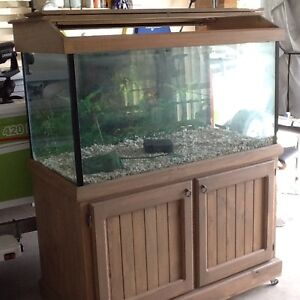 Large 4ft Fish Tank Aberglasslyn Maitland Area Preview