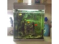 380 aquarium tank 2 fish etc
