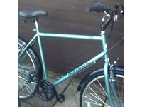Mens professional tourist Bicycle £65
