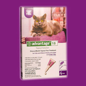 Can Advantage For Cats Be Used On Dogs