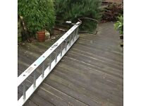 Ladder Cat Ladder 14FT excluding Hook in good condition