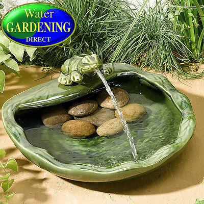 Frog Solar Ceramic Water Feature