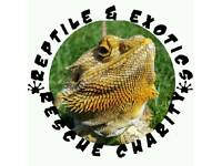 Reptile& Exotic Rescue Charity