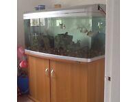 Aquarium, aqua1 fr 1230xl 4 foot tank