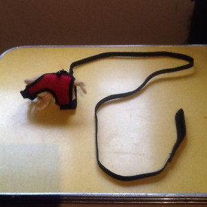 Rodent leash