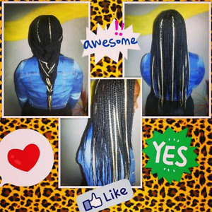 Braids 60.00 and up