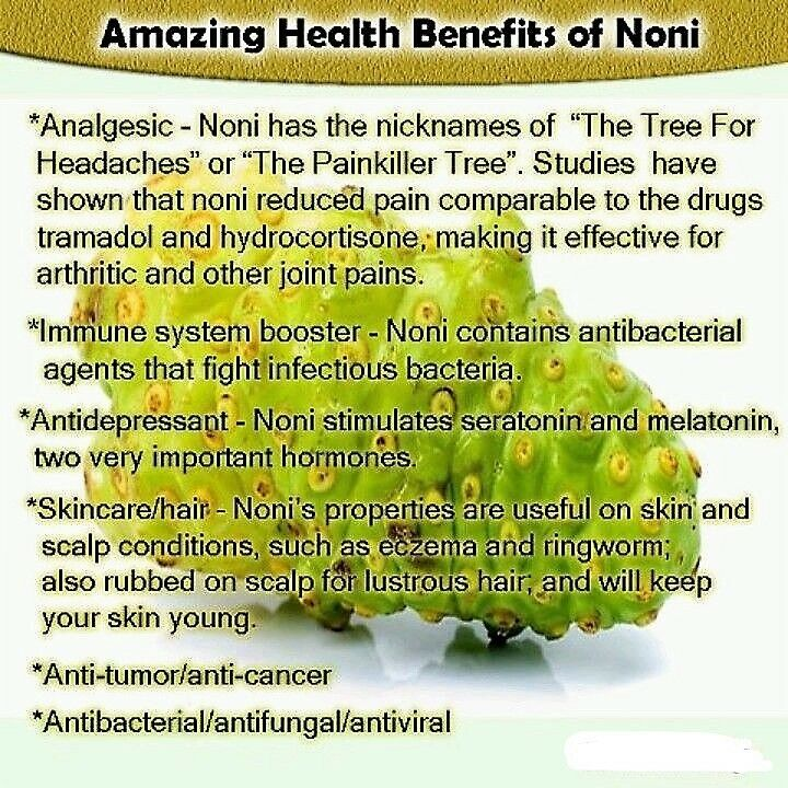 Energy Booster For Men - Noni Extract 500mg 1b - Noni Fruit Extract 2