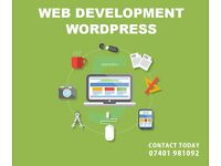 Affordable Website Design and Development