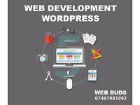 Mobile Friendly Website Development   Fast Turn Around