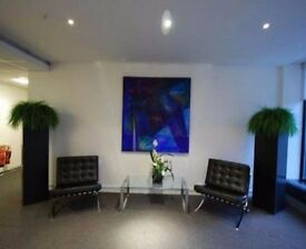 Office Space To Rent next to Euston Station | Options for 4 - 10 People | Euston, Camden, London NW1