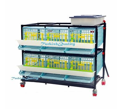 Duplex Six Compartment Quail Egg Farming Cage First In World Patented Design