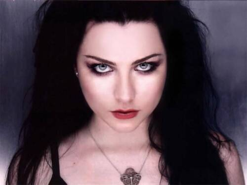Evanescence - Amy Lee  - 16x20 photo - not a cheap paper poster