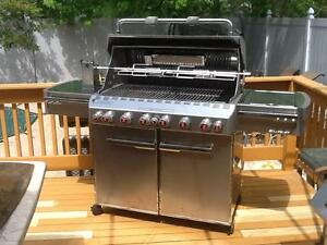 weber summit barbecues grills smokers ebay. Black Bedroom Furniture Sets. Home Design Ideas