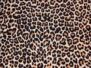 Leopard Print Cake Decorations