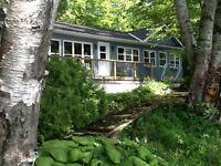 Wood Lake - A Muskoka Gem! Fall Weeks Available!