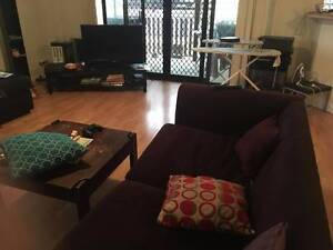 Room for rent asap in great house East Brisbane Brisbane South East Preview