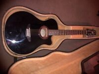 12 String Electro Acoustic incl case