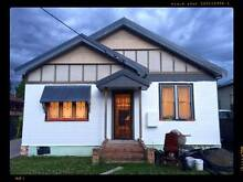Fantastic Large 4 Bedroom House To Share Speers Point Lake Macquarie Area Preview