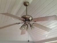 Ceiling fan/light fitting