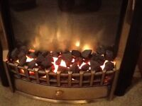 Electric pal effect fire