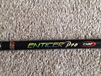 2 Garcia Abu Enticer Pro 12ft 2.75 lb Carp rods with bags