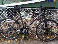 Diadora Orma men's mountain bike