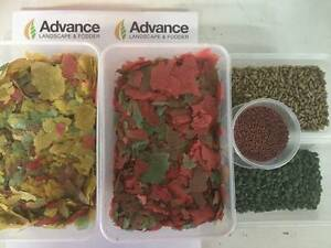 Fish Food Tropical Gold Fish Siamese Turtle Burton Salisbury Area Preview