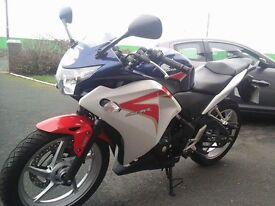 Honda cbr250r bargain