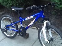 Carrera blast Childs mountain bike