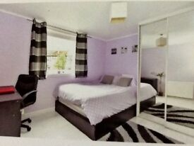 Newly renovated double room