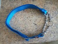 Dog leads, longline and collars