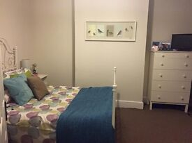 Lovely 3 bedroom flat available 3rd July 2017 for students or professionals!