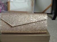 Ladies clutch decorative bag