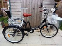 Adults Tricycle 'dutch' style..folding!...as new