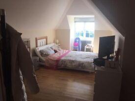 Single room in the Lanes (Brighton Centre)