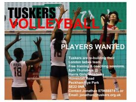 Free Ladies Volleyball - Players Wanted - Quality Coaching - Free Sessions