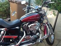 Harley 1200 Custom sportster low mileage