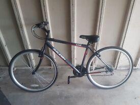 Hybrid Bike - Raleigh Altare