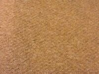 Free neutral colour carpet remanents