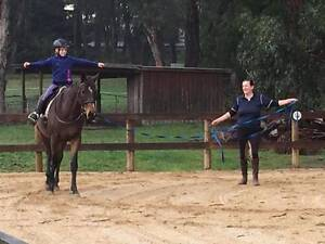Beginner-Intermediate Riding Lessons Mount Evelyn Yarra Ranges Preview